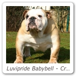 Luvipride Babybell - Crufts 2006