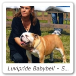 Luvipride Babybell - Speciale Torino CAC CACIB