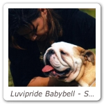 Luvipride Babybell - Speciale Torino CAC CACIB_