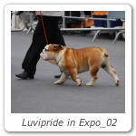Luvipride in Expo_02