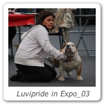 Luvipride in Expo_03