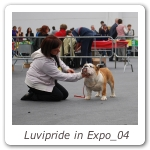 Luvipride in Expo_04