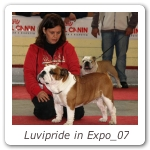 Luvipride in Expo_07