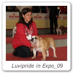 Luvipride in Expo_09