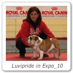 Luvipride in Expo_10