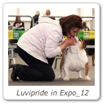Luvipride in Expo_12