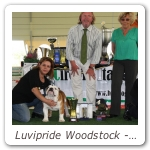 Luvipride Woodstock - Camp_Sociale 2011